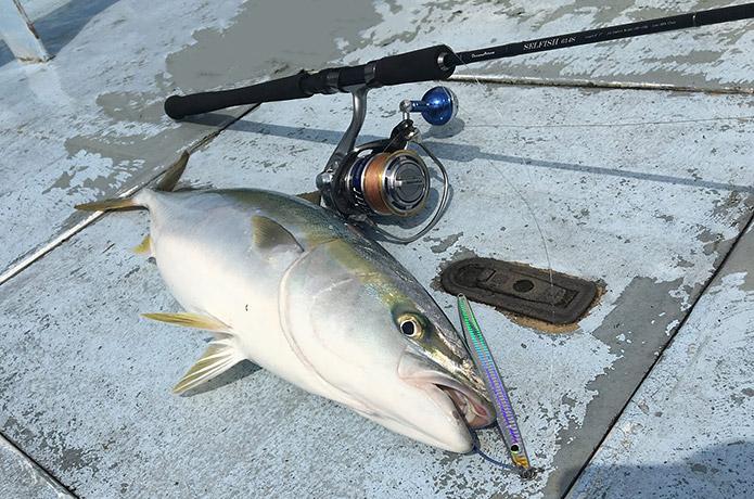 10月2日 1便 白イカ釣り 釣果
